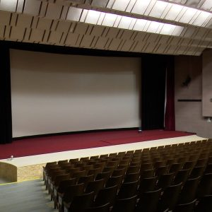 kino zriedlo
